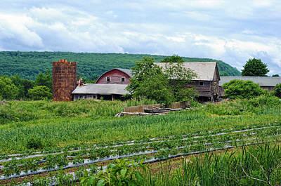 Photograph - Broken Barn by Kenneth Feliciano