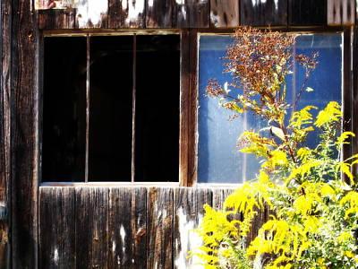 Photograph - Broken Dreams IIi by Deborah Fay