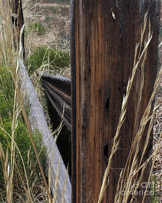 Photograph - Broken Fence Line by Arizona  Lowe