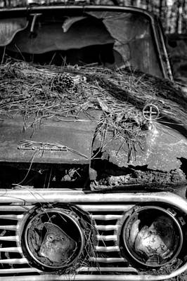 Pine Needles Photograph - Broken Headlights Of A Comet In Black And White by Greg Mimbs