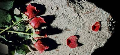 Romeo And Juliet Photograph - Broken Heart 2 by Scott Campbell