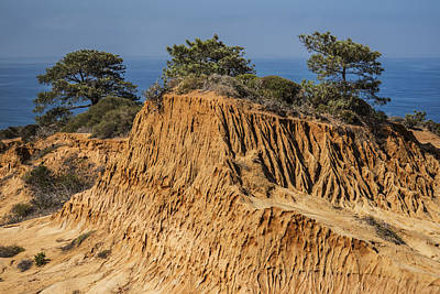 Art Print featuring the photograph Broken Hill At Torrey Pines by Lee Kirchhevel