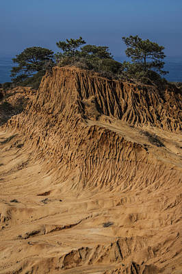 Photograph - Broken Hill Torrey Pines 1 by Lee Kirchhevel
