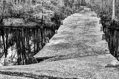 Cypress Swamp Photograph - Broken Pathways by JC Findley