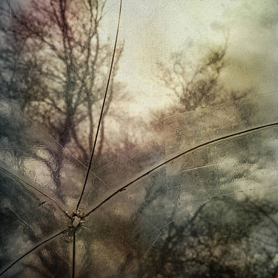 Photograph - Broken Sky by Sally Banfill
