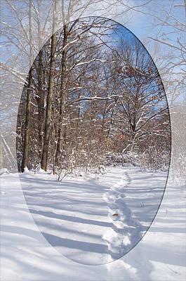 Photograph - Broken Trail by Georgia Hamlin