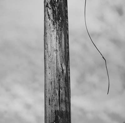 Telephone Poles Photograph - Broken Wire by Dan Sproul