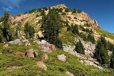 Photograph - Brokeoff Mountain Climb by Adam Jewell