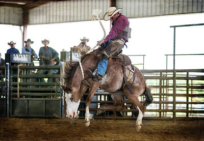 Photograph - Bronc On Air by Lisa Moore