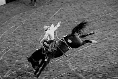 Photograph - Bronc Stompin by Trent Mallett