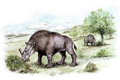 Paleozoology Photograph - Brontotherium Prehistoric Mammals by Deagostini/uig