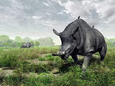 Animal Behaviour Wall Art - Photograph - Brontotherium by Walter Myers