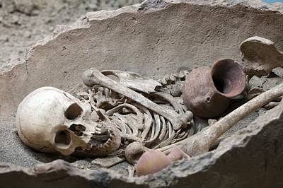 Mba Photograph - Bronze Age Burial Remains by Science Photo Library