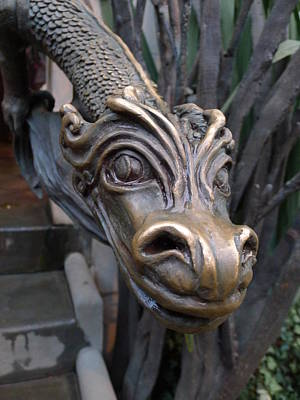 Photograph - Bronze Dragon by Richard Reeve