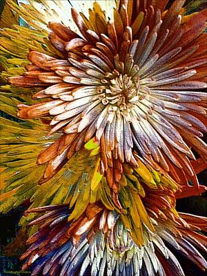 Photograph - Bronze Fuji Spider Mum by Michelle Frizzell-Thompson