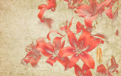 Bronze Lily Grunge Art Print by Lesley Rigg