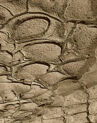 Photograph - Bronze Mud Patterns 2 by Tom Daniel