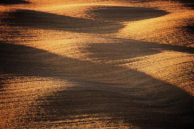 Field Photograph - Bronze Waves by Philipp Klinger