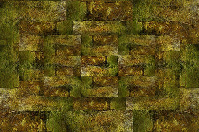 Digital Art - Bronze Weave by Tom Romeo