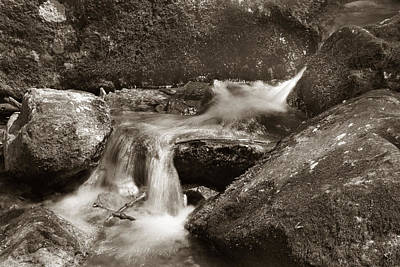 Photograph - Brook  by Joseph G Holland