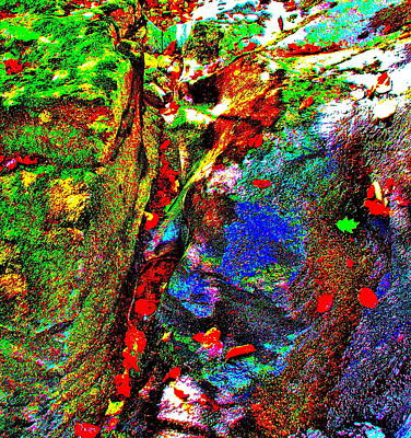Photograph - Brook Texture Z143 by George Ramos