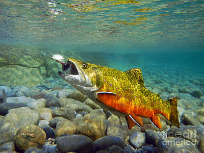 Brook Trout Image Painting - Brook Trout And Mepp's  by Paul Buggia