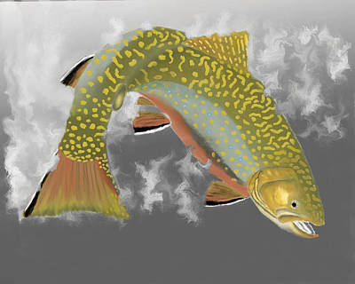Brook Trout Image Photograph - Brookie by Bruce J Barker