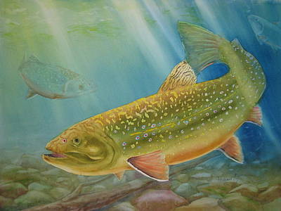 Brook Trout Painting - Brookie by Mohamed Hirji