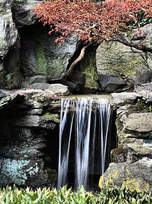 Photograph - Brooklyn Botanical Garden by JC Findley