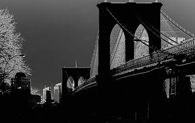 Photograph - Brooklyn Bridge In Shadow by James Canning