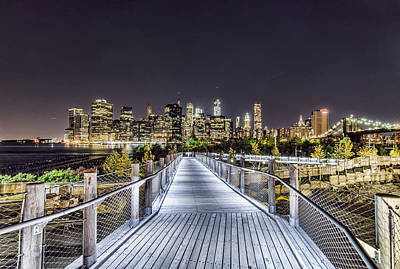 Photograph - Brooklyn Bridge Park by Barry Cole