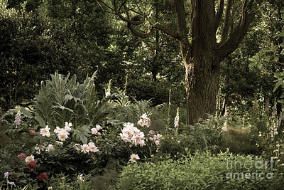 Photograph - Brookside Gardens by Chris Scroggins