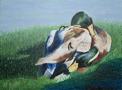 Brotherly Love Painting - Ducks - Mallard - Brotherly Love by Haley Mueller