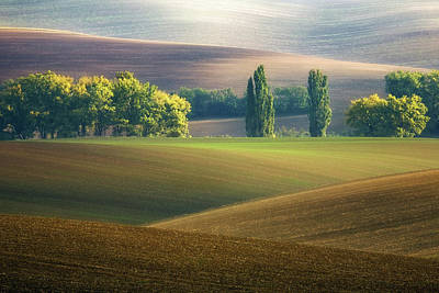Agriculture Wall Art - Photograph - Brothers... by Krzysztof Browko