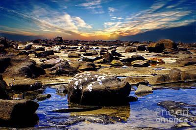 Australia Photograph - Broulee 2 by Ben Yassa