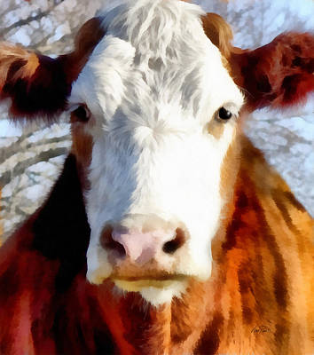 Digital Art - Brown And White Cow - Animals - Cows -art by Ann Powell