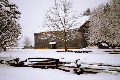 Photograph - Brown Barn by Mary Beth Landis