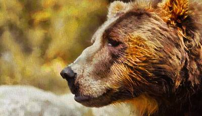 Kodiak Bear Painting - Brown Bear Painting by Dan Sproul