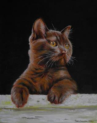Painting - Brown Cat by Tony Calleja