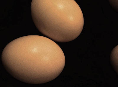 Photograph - Brown Eggs by Bill Owen