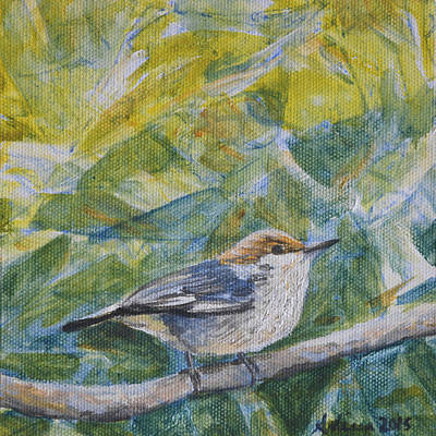 Painting - Brown-headed Nuthatch - Birds In The Wild by Arlissa Vaughn