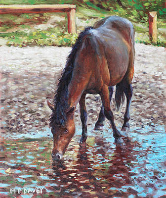 Painting - Brown Horse Drinking From Stream by Martin Davey