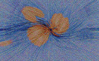 Brown Leaf Afloat Art Print by Bruce Iorio