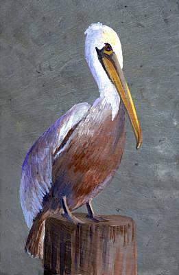 Brown Pelican Art Print by Elaine Hodges