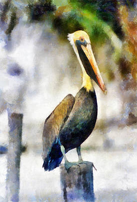 Painting - Brown Pelican by Lester Phipps