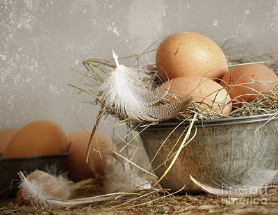 Photograph - Brown Speckled Eggs  In Old Tin Bowl by Sandra Cunningham