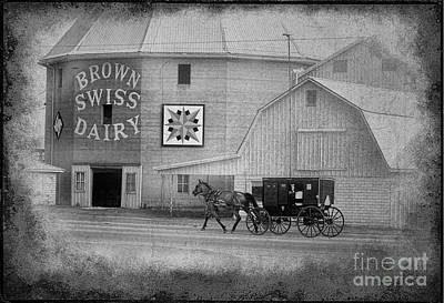 Brown Swiss Dairy And Amish Buggy Art Print by David Arment