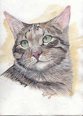 Pet Art Painting - Brown Tabby by Callie Smith