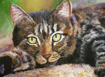 Brown Tabby Relaxing Art Print by Mary Jo Zorad