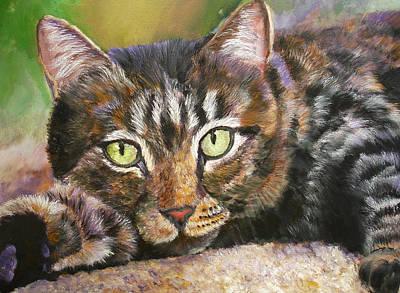 Brown Tabby Relaxing Art Print